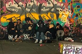 Skate park community